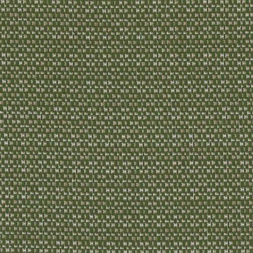 Olive 070